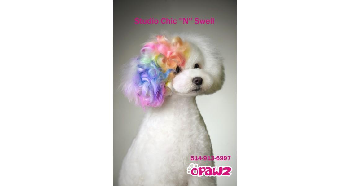 Téléphone Chic N Swell