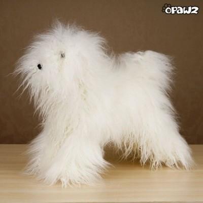 Ensemble Caniche Model dog et pelisse de poil Blanc Opawz